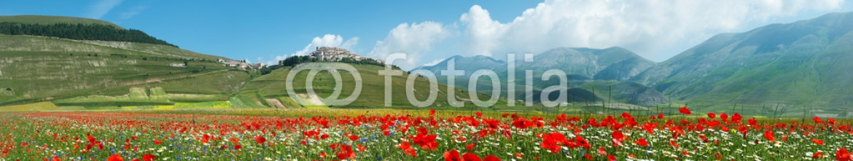 34688975 – Italy – Panoramica Fioritura Castelluccio
