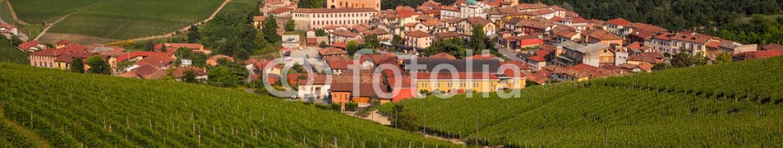 42468712 – Italy – Comune di Barolo, Piemonte. Italia