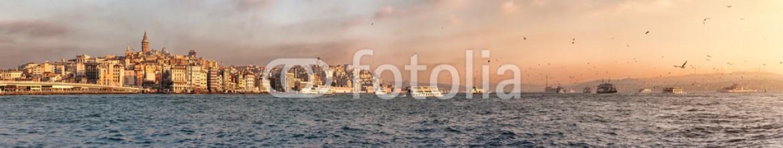 49316188 – Ukraine – Istanbul