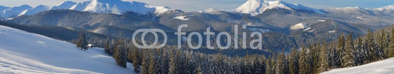 59290385 – Ukraine – Winter in the mountain valley