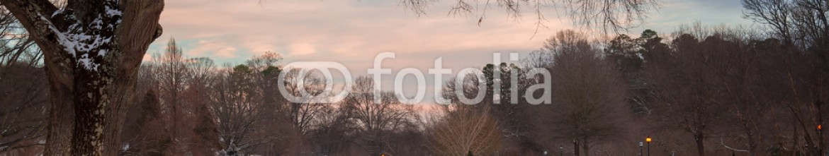 60960594 – United States of America – Overlooking the pond at Freedo,m Park