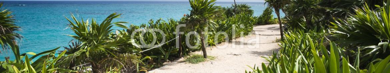 63298089 – Mexico – Riviera maya