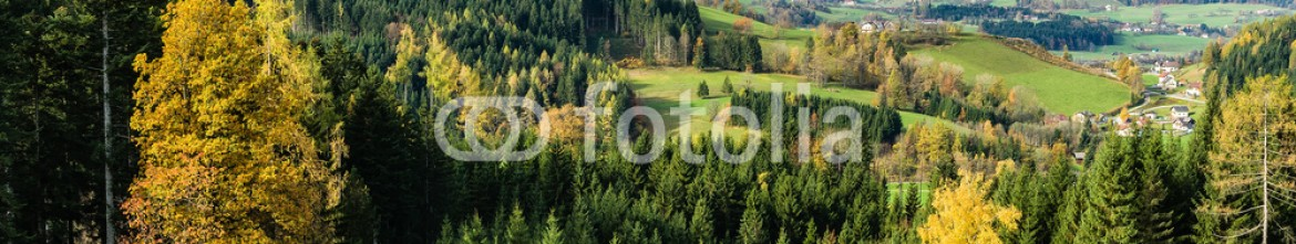 64500520 – Austria – Autumn afternoon in a mountain meadow