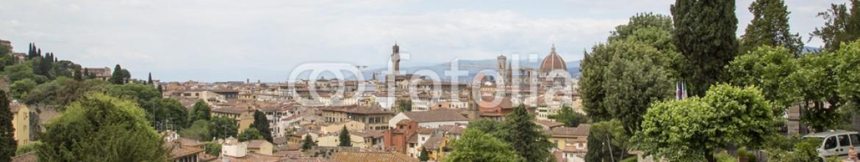 65389649 – Italy – Firenze