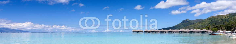 68536246 – Italy – Palma su una spiaggia bianca in Polinesia francese
