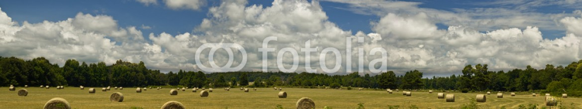 68586096 – United States of America – Hay in Field Panorama