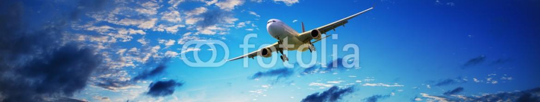 71141978 – Russian Federation – Jet in flight