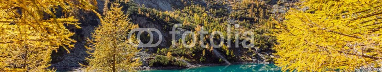 71310024 – Italy – Lagazzuolo – Valtellina (IT)