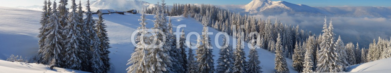 72162059 – Ukraine – Winter Landscape