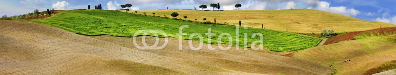 76482776 – Ukraine – Tuscana landscapes. golden hills of Orcia.