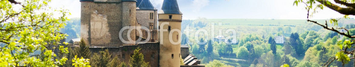 77904123 – Russian Federation – View of Vianden castle in Luxembourg from the hill