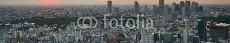 80228959 – United States of America – Tokyo