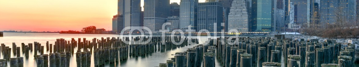 80393212 – United States of America – New York Skyline