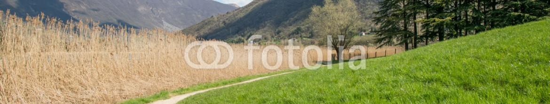81023701 – Italy – collina