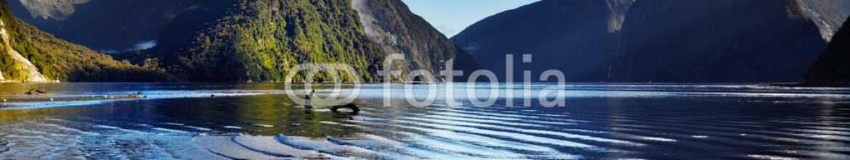 Скинали Новая Зеландия