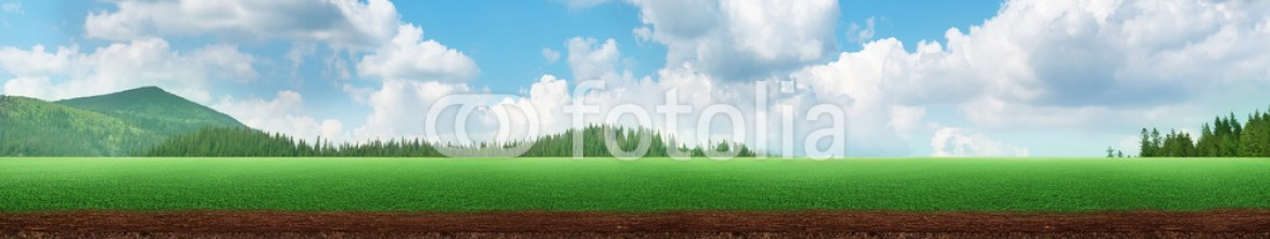 82166490 – Ukraine – Panoramic view of a meadow