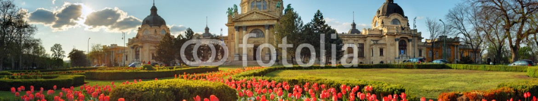 82261719 – Hungary – Budapest – spring panorama with flower, Szechenyi Spa, Hungary