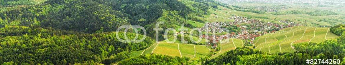 82744260 – Germany – Panoramic view of the black forest and typical village. Germany.