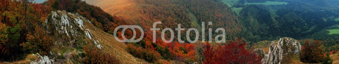 83144581 – Slovakia – Rock and forest at autumn in Slovakia