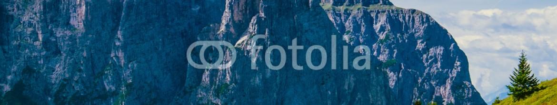 83322844 – Italy – Pascoli di montagna sulle dolomiti all'alpe di Siusi