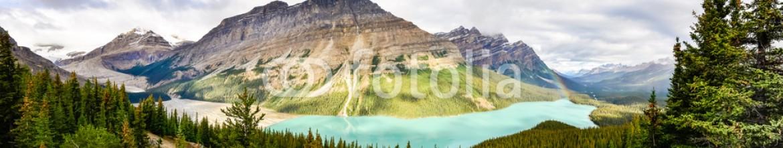 83863197 – Canada – Panoramic view of Peyto lake and Rocky mountains, Alberta