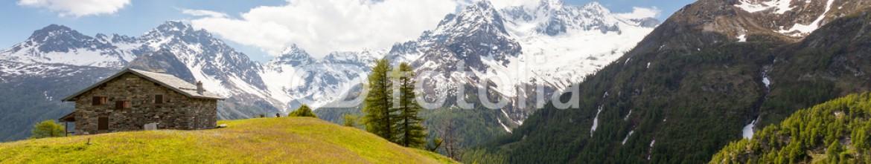 84496625 – Italy – Valmalenco (IT) – Alpe dell'oro