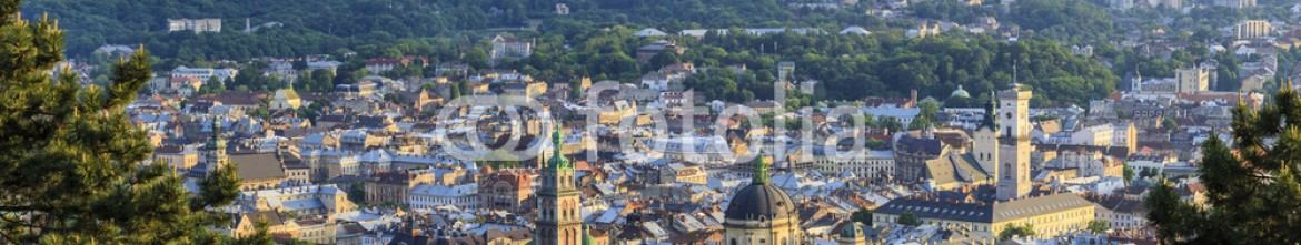 84906301 – Ukraine – View of the city of Lviv from the High Castle Park at sunset