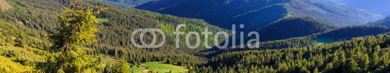85265151 – Ukraine – Carpathian mountains