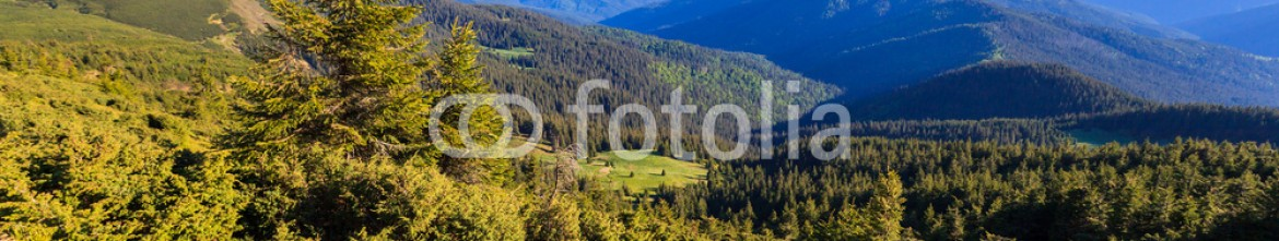 85268116 – Ukraine – Carpathian mountains