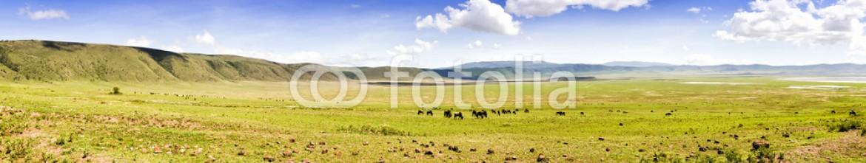 86233501 – United Republic of Tanzania – Panoramic View of Ngorongoro