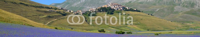 87171103 – Italy – Fioritura di Castelluccio di Norcia