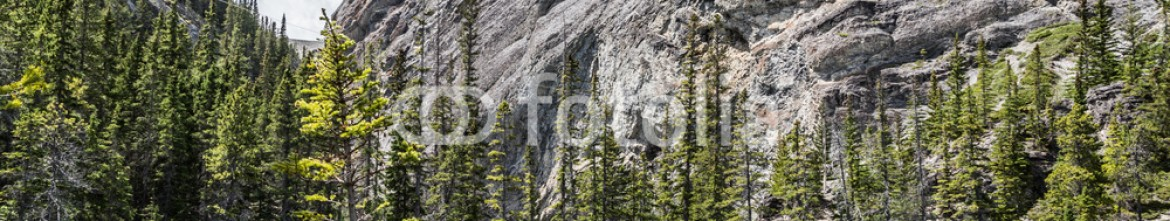 87352470 – Canada – Climing to Grassi Lake
