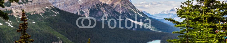 87353078 – Canada – Bow Summit and Peyto Lake VIII