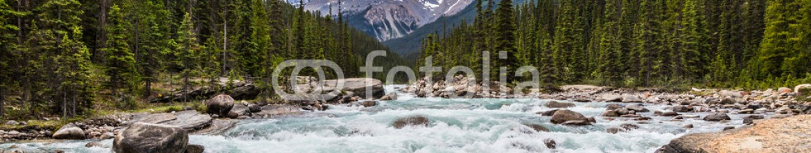87353296 – Canada – colorful water of the Mistaya River