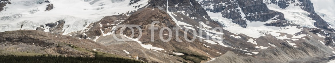 87353773 – Canada – Icefield Parkway