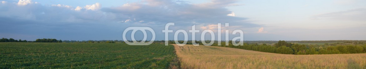 88320765 – Ukraine – Clouds over the field on a summer day