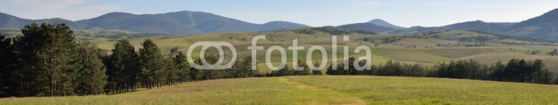 88808293 – Serbia – Path through green field to hills