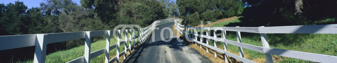 90021894 – United States of America – This is a road or driveway leading up to a house on a hill surrounded on both sides by a white fence. There is yard on either side with green trees in the background.