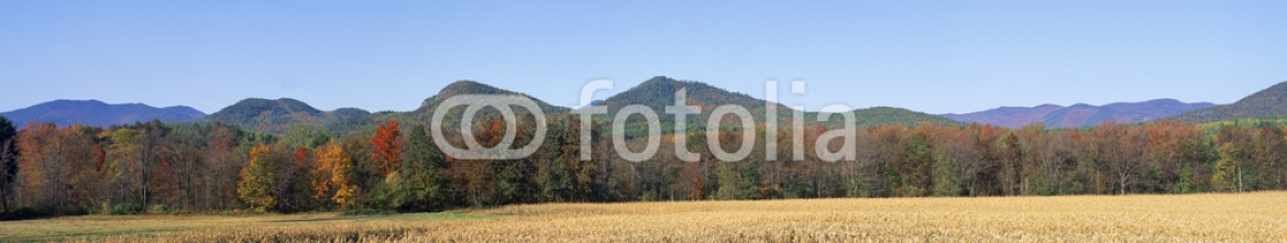 90067912 – United States of America – Field and mountains, New York