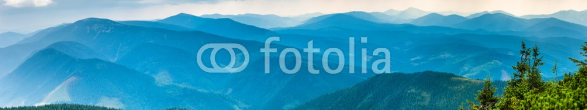 90384759 – Ukraine – Blue mountains covered with green forest. Panorama view of peaks ridge