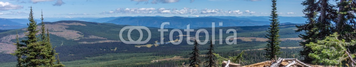 90597074 – Canada – View from Tod Mountain in the Shuswap Highlands of British Columbia, Canada, with fallen trees in the foreground