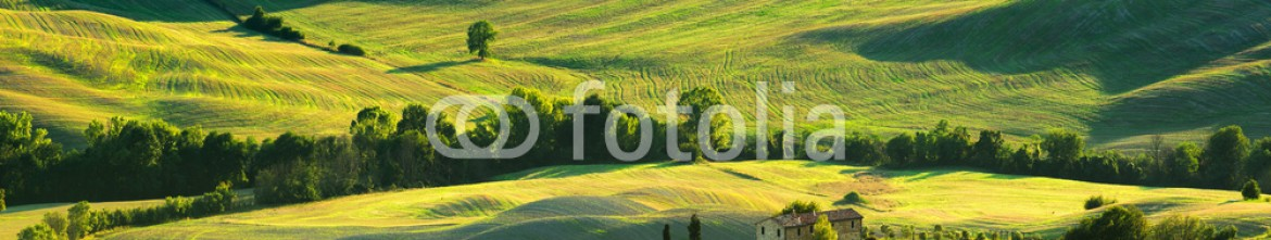 91575082 – Italy – Tuscan landscape the national park of Val d'Orcia, a UNESCO heri