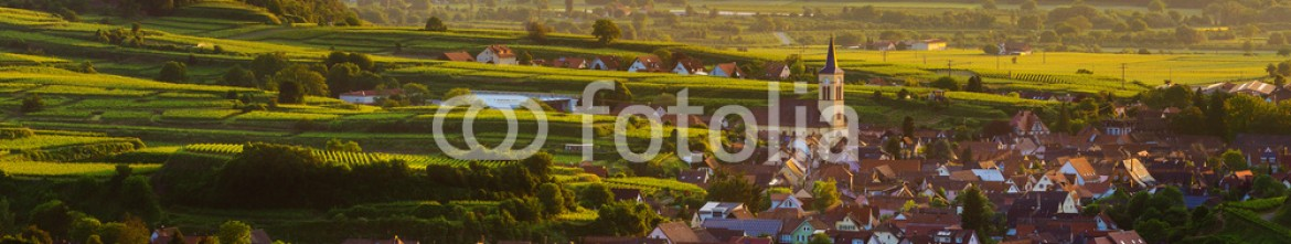 91744797 – Russian Federation – Beautiful scenic mountain panorama with vineyards and old picturesque town in Germany at sunset, Black forest, Kaiserstuhl, Oberrotweil.Travel and wine-making background.