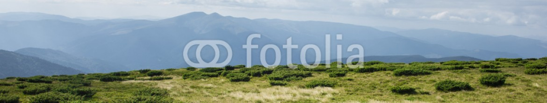 91844223 – Ukraine – scenic edge of the Carpathian Mountains. Ukraine