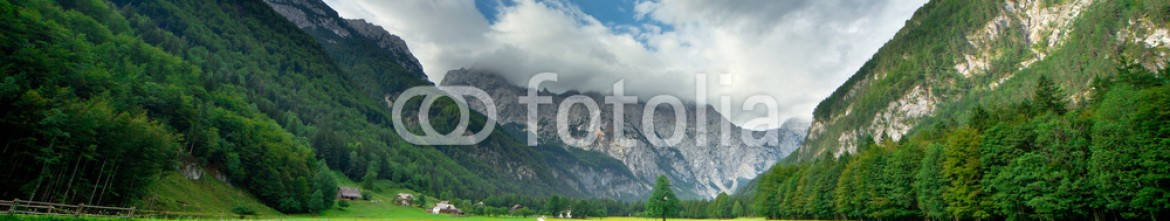 91928051 – Slovenia – Pasture in Slovenian Alps