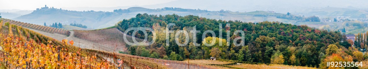 92535564 – Italy – Panoramic view of the Langhe vineyards and hills