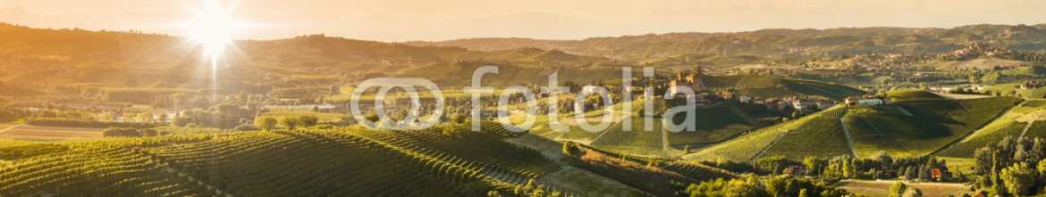 92535593 – Italy – Panoramic view of the Langhe vineyards and hills