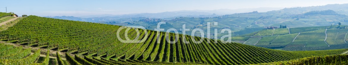 93065583 – Italy – Panoramic view of the Langhe vineyards and hills in autumn