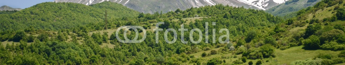 93069330 – Hungary – Italian landscape in summer – snowy mountain and forest