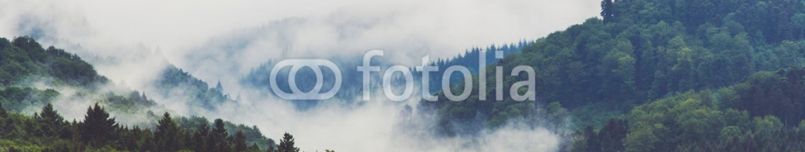 93125320 – Russian Federation – Scenic landscape with mountain forest in fog. Germany, Black forest. Filtered.